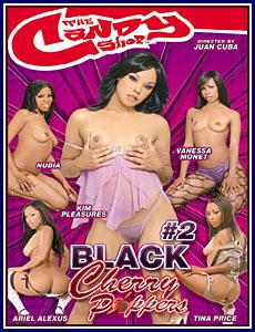 Kim Pleasures Porn 48