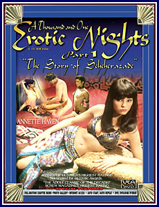 1001 Erotic Nights Porn DVD