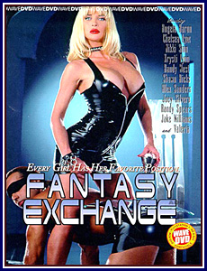 Fantasy Exchange Porn DVD