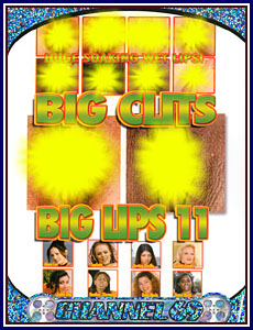 Big Clits Big Lips 11 Porn DVD