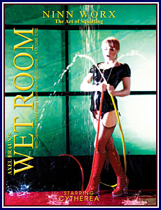 Wet Room Porn DVD