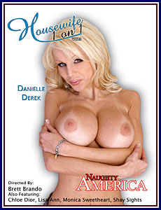 Housewife 1 On 1 3 Porn DVD