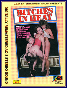Bitches In Heat 5 Porn DVD