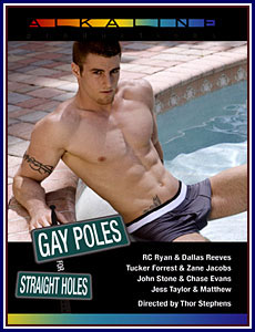 Gay Poles for Straight Holes