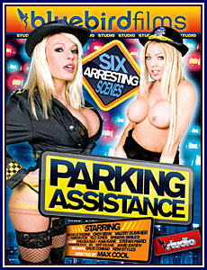 Parking Assistance Porn DVD