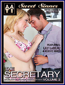 Secretary, The 2 Porn DVD