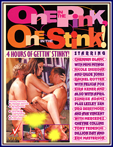 One In The Pink One In The Stink Porn DVD