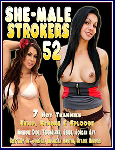 She Male Strokers 52 Porn DVD