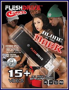 Alone in The Dark 4GB FleshDrive Porn DVD