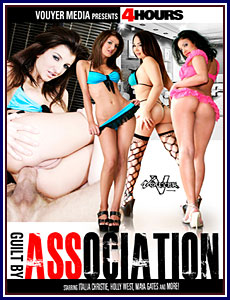 Guilt By Association Porn DVD