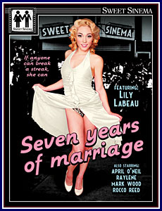 Seven Years of Marriage Porn DVD