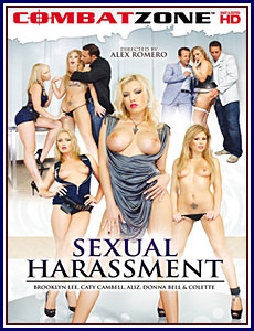 Sexual Harassment Porn DVD