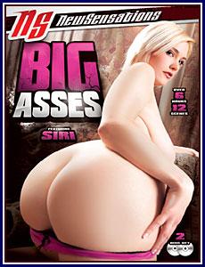Big Asses Porn DVD