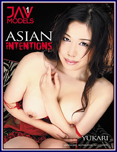 Asian Intentions Porn DVD