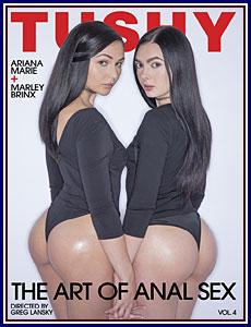 The Art of Anal Sex 4 Porn DVD