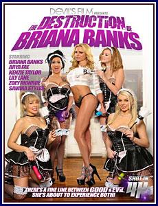 The Destruction of Briana Banks Porn DVD