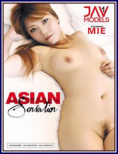 Asian Sensation Porn DVD