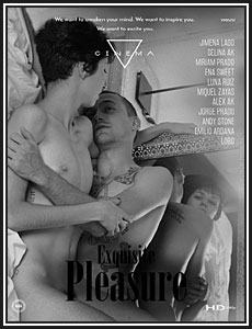 Exquisite Pleasure Porn DVD