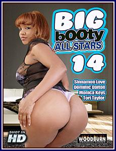 Big Booty All Stars 14 Porn DVD