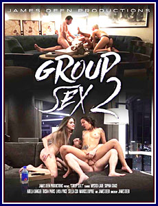 Group Sex 2 Porn DVD