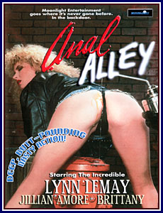 Anal Alley Porn DVD