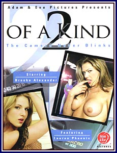 2 Of A Kind Porn DVD