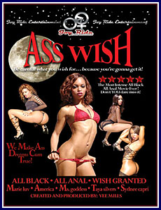 Ass Wish Porn DVD