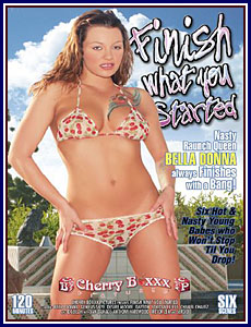 Finish What You Started Porn DVD