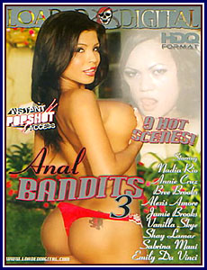 Anal Bandits 3 Porn DVD
