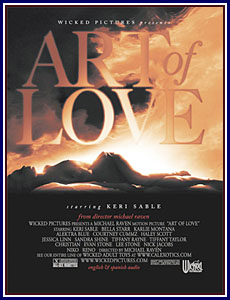 Art Of Love Porn DVD