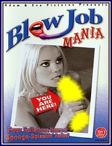 BlowJob Mania Porn DVD