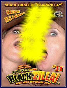 My Hot Wife Is Fucking Blackzilla 11 Porn DVD