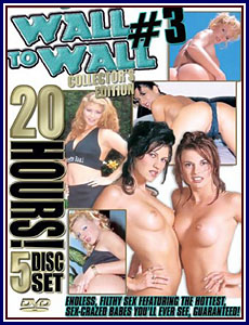 20 Hours of Wall To Wall 3 Porn DVD
