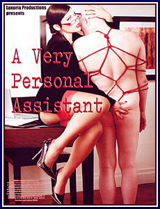 A Very Personal Assistant Porn DVD