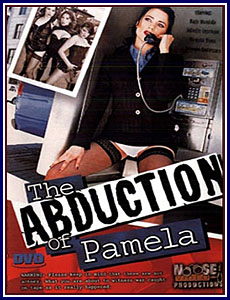 Abduction of Pamela Box Cover Art.