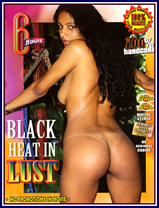 Black Heat In Lust Porn DVD