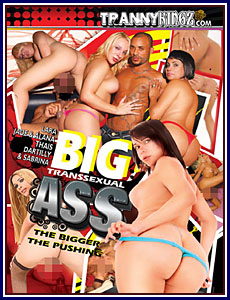 Big Transsexual Ass Porn DVD