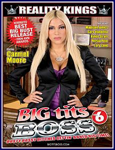 Big Tits Boss 6 Porn DVD