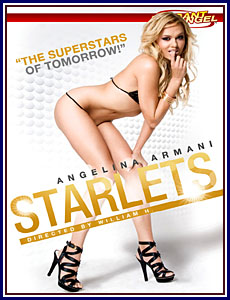Starlets Porn DVD