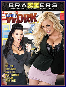 Big Tits At Work 8 Porn DVD