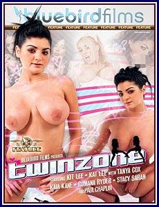 Twinzone Porn DVD
