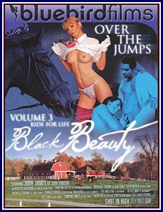 Black Beauty 3 Porn DVD