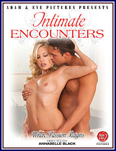 Intimate Encounters Porn DVD