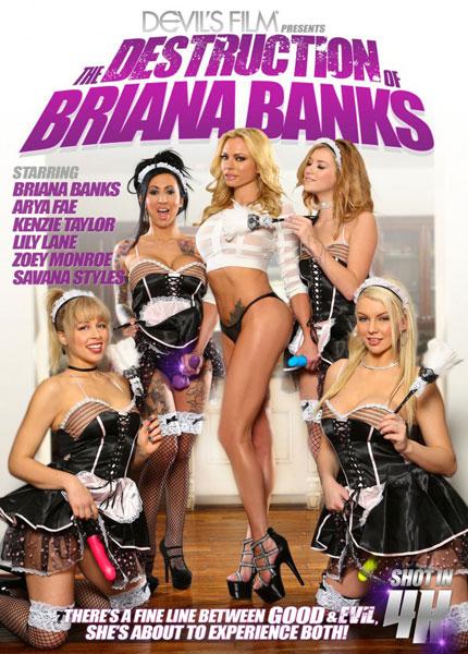 The Destruction Of Briana Banks (2017)