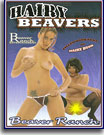 Hairy Beavers