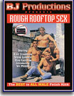Rough Rooftop Sex