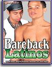 Bareback Latinos