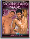 Pornstars in Vegas 2