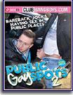 Public Gay Spots 2