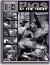 More Pigs At The Troff